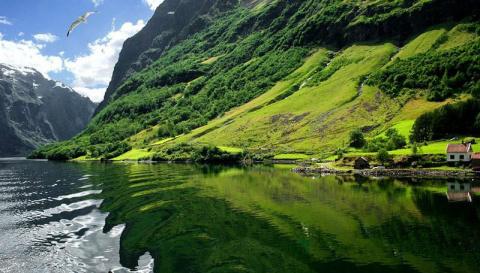 Самые красивые фьорды Норвегии