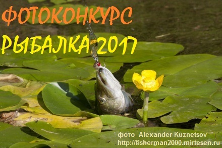"ФОТОКОНКУРС ""РЫБАЛКА 2017"""