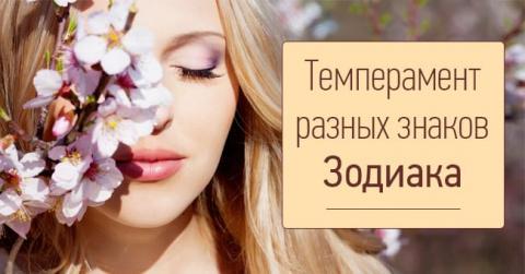 """""""Мое настроение тоже коиталь…"""