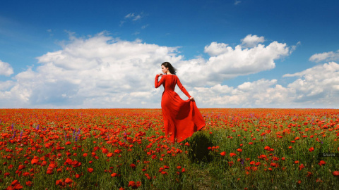 Краски весеннего Крыма