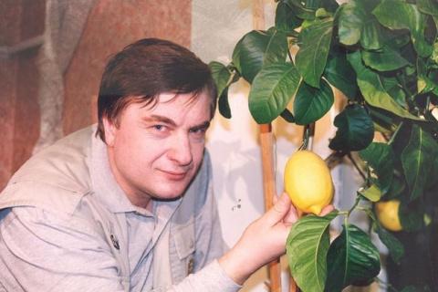 Домашний лимонарий