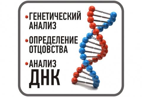 ДНК-ТЕСТ И ДИСКРИМИНАЦИЯ МУЖИКОВ