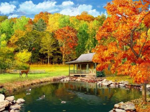 Осенняя пора...