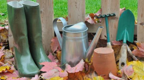 Секреты осеннего полива сада