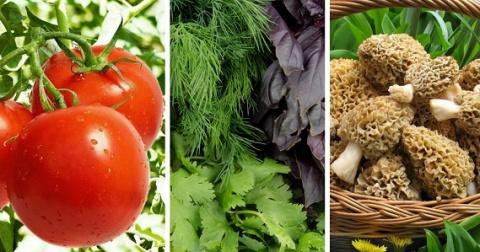 Какие натуральные продукты питания можно смело покупать в апреле?