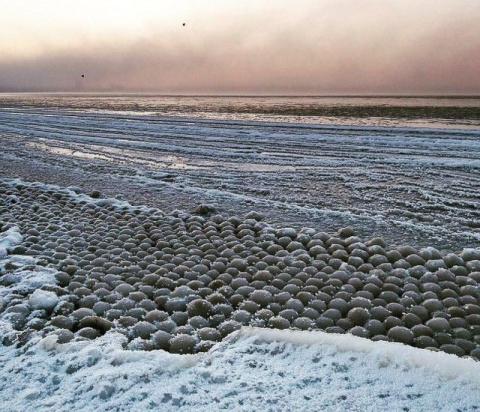Финский залив покрылся ледяными шарами