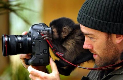 Начинающему фотографу на заметку