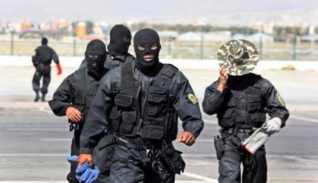 Виранском Курдестане вскрыт…