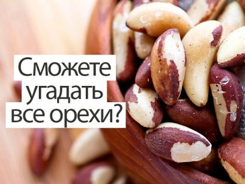 Сможете ли вы угадать орехи …