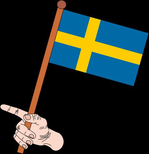 Мусульмане Швеции требуют переименовать страну