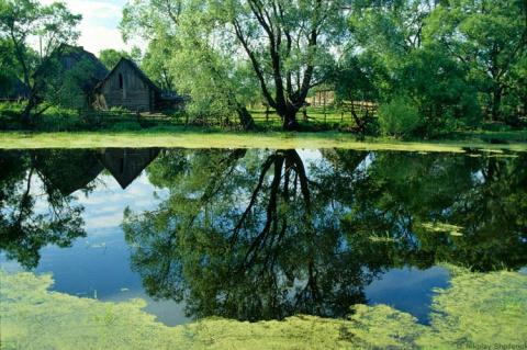 В затерянном мире русской деревни