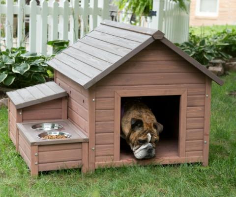 25 оригинальных идей для собачьей будки