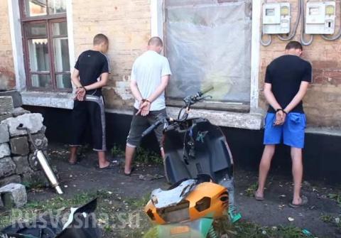 «Онижедети»: В ДНР обезвреже…