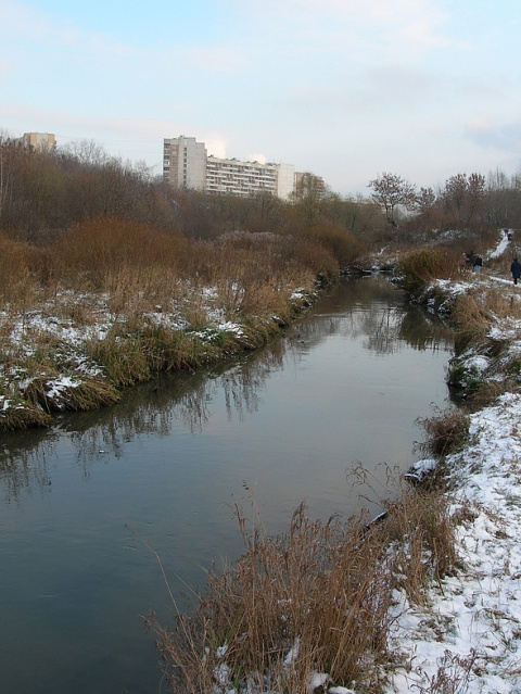Бизнесмен украл речку и затопил соседей в элитном поселке Подмосковья