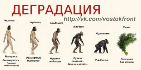 Пусть украинцы начнут думать…
