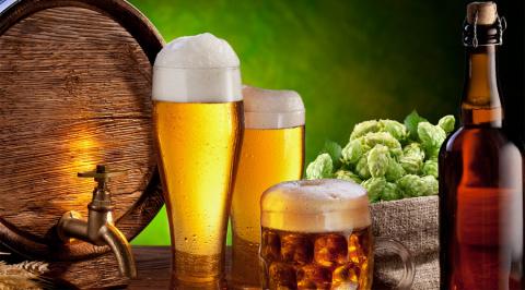 Почему нужно пить пиво: учен…