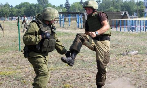 Украинские «захисники»: в Де…