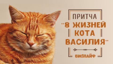 Притча «Восемь жизней кота Василия»