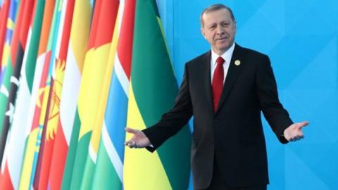 Развязаны руки: зачем Эрдога…