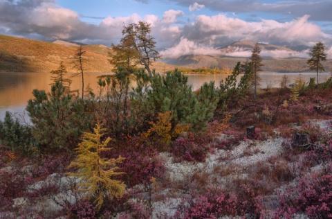 Осенняя Колыма и не только в пейзажных фотографиях Тони Андреевой