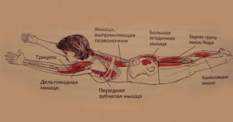 Избавься от болей в спине, у…