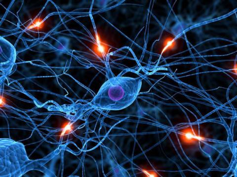 Лечение рассеянного склероза народной медициной