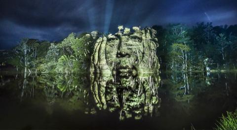 Французский художник рисует граффити в амазонских джунглях