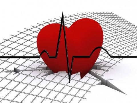 Как сердце справляется со стрессом