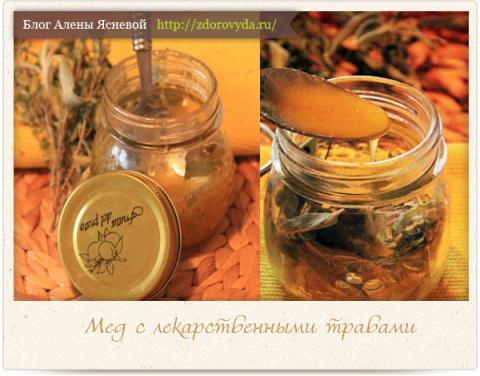 Мед с лекарственными травами — целебный рецепт фитотерапии