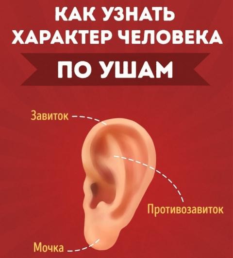 Как узнать характер человека по ушам