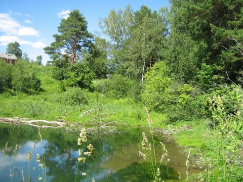Из деревни вытек пруд