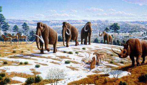 10 научных загадок, которым …