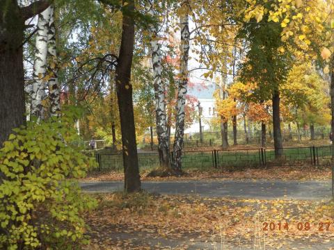 Влюбленность в ... осень