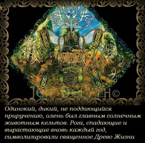 Художник Jen Delyth и кельтская символика