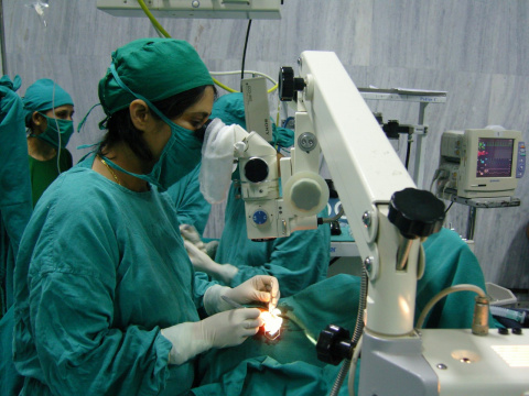 Совершен прорыв в офтальмоло…