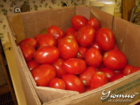 Хотите помидор - купите трихопол