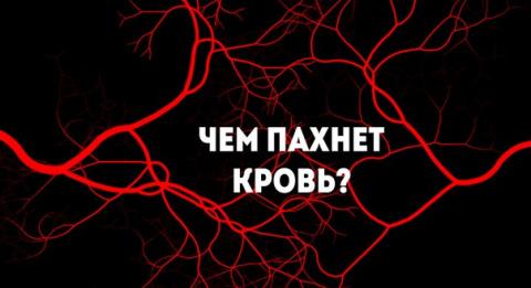 Чем пахнет кровь?