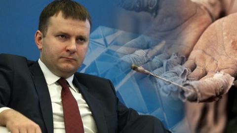Системные либералы пытаются не допустить выхода России из ВТО