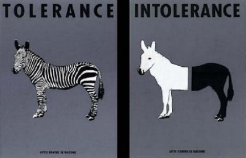 Европейский союз и толерантн…