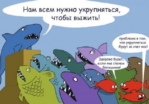 Жириновский анонсировал укру…