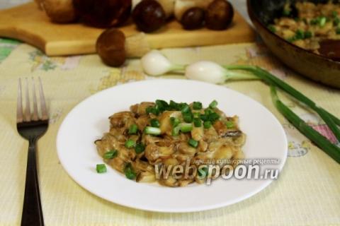 Белые грибы в сметане