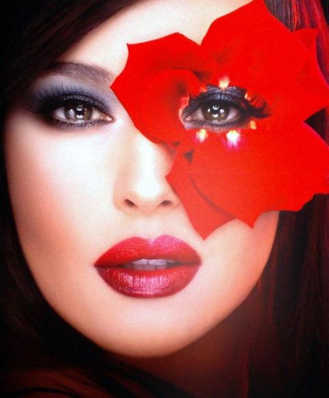 Имя Моники Белуччи — синоним женской красоты