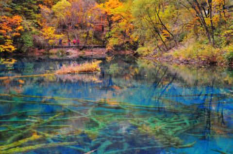 МИР ВОКРУГ. Удивительное озеро в Китае