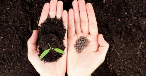 Как быстро посеять семена и …