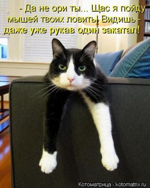 В МИФИ открыта кафедра богословия))