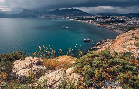 В Крыму сообщили о росте чис…