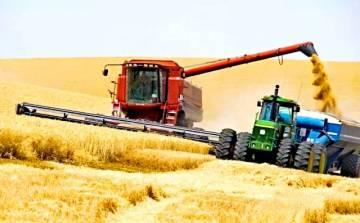 Зерновое проклятие России