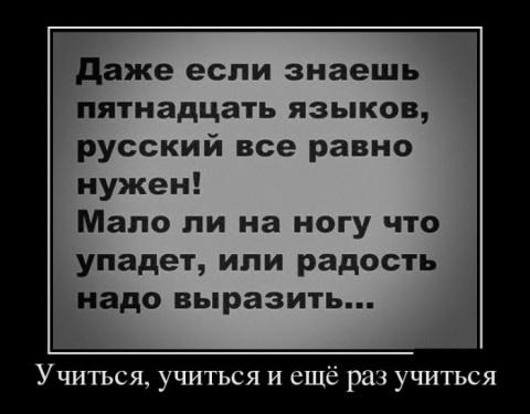 Веселые премудрости)