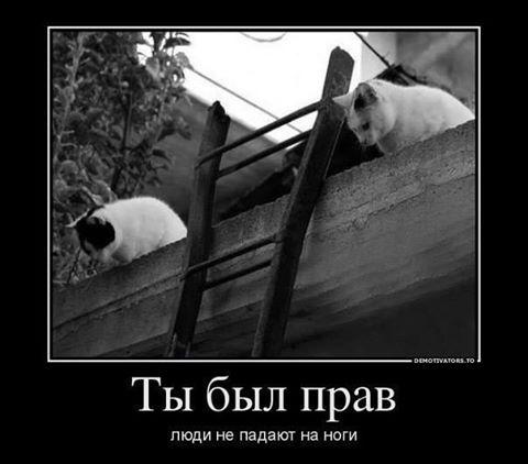 И для ЭТОГО мы его ждали?)))))