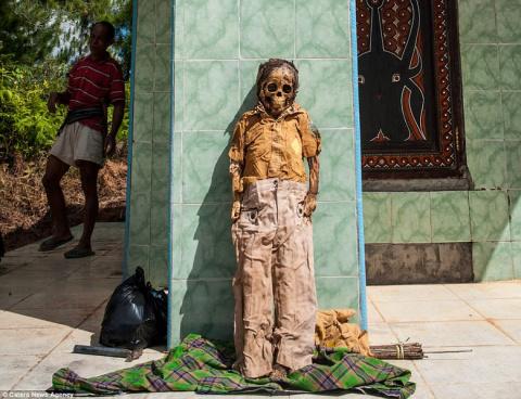 Индонезийский народ тораджи провел очередной праздник «выгула» мертвецов